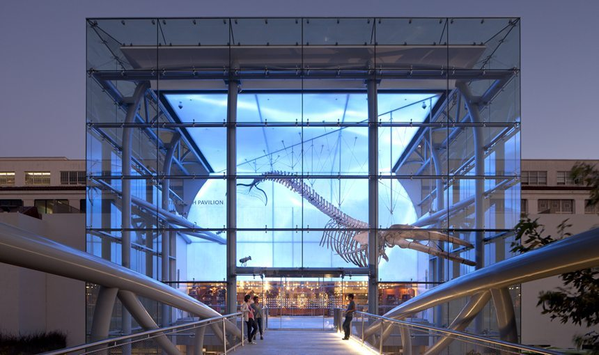 MATT construction Natural History Museum Los Angeles Exterior Bridge Front Entrance Night