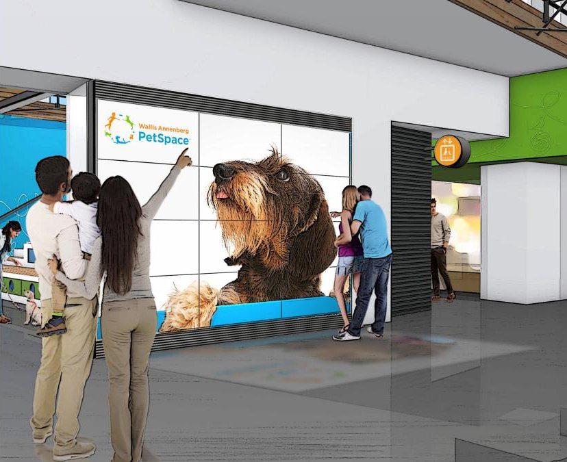 wallis annenberg petspace playa vista ca lobby and interactive wall matt construction