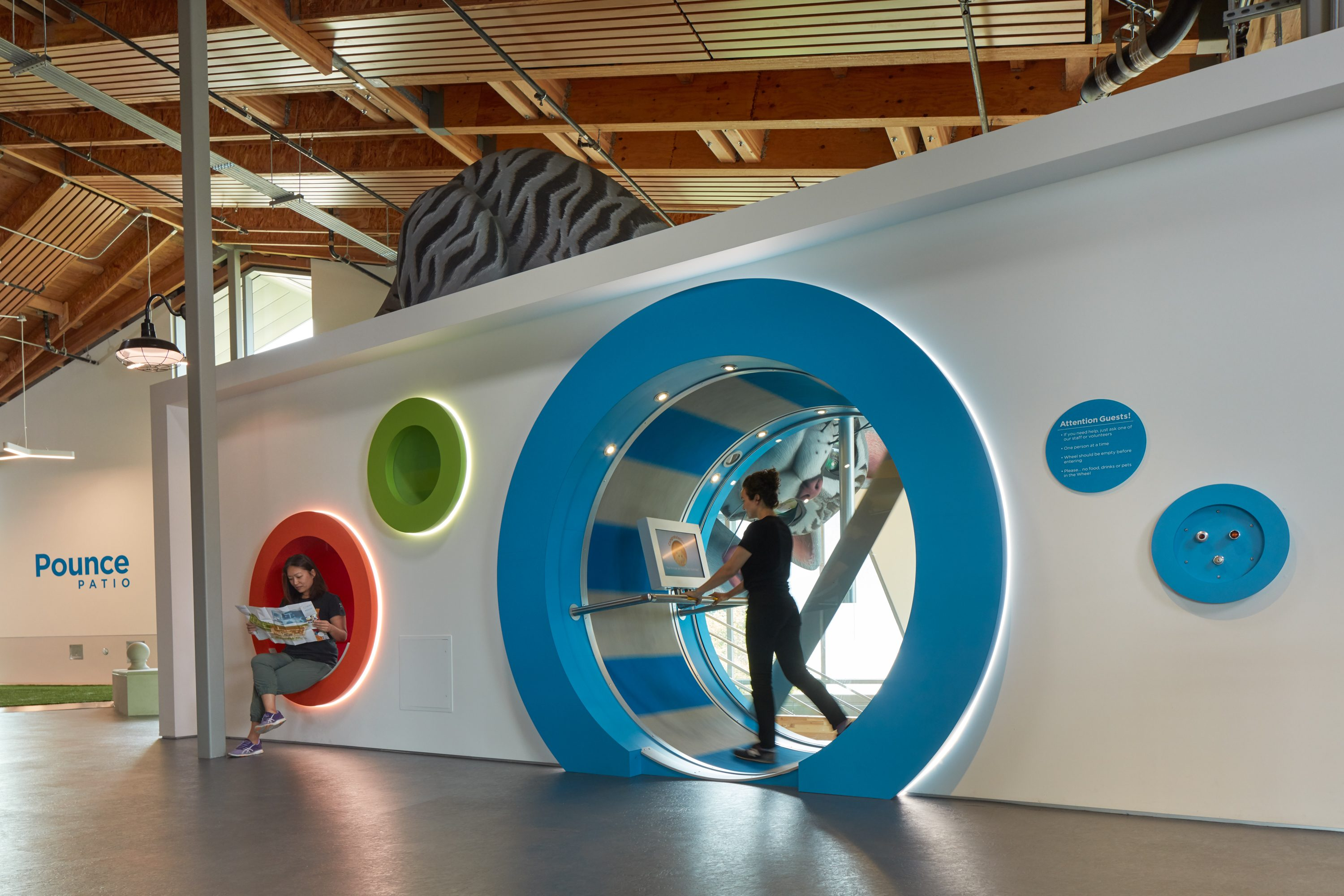 MATT construction Annenberg Playa Vista PetSpace Interior human hampster wheel