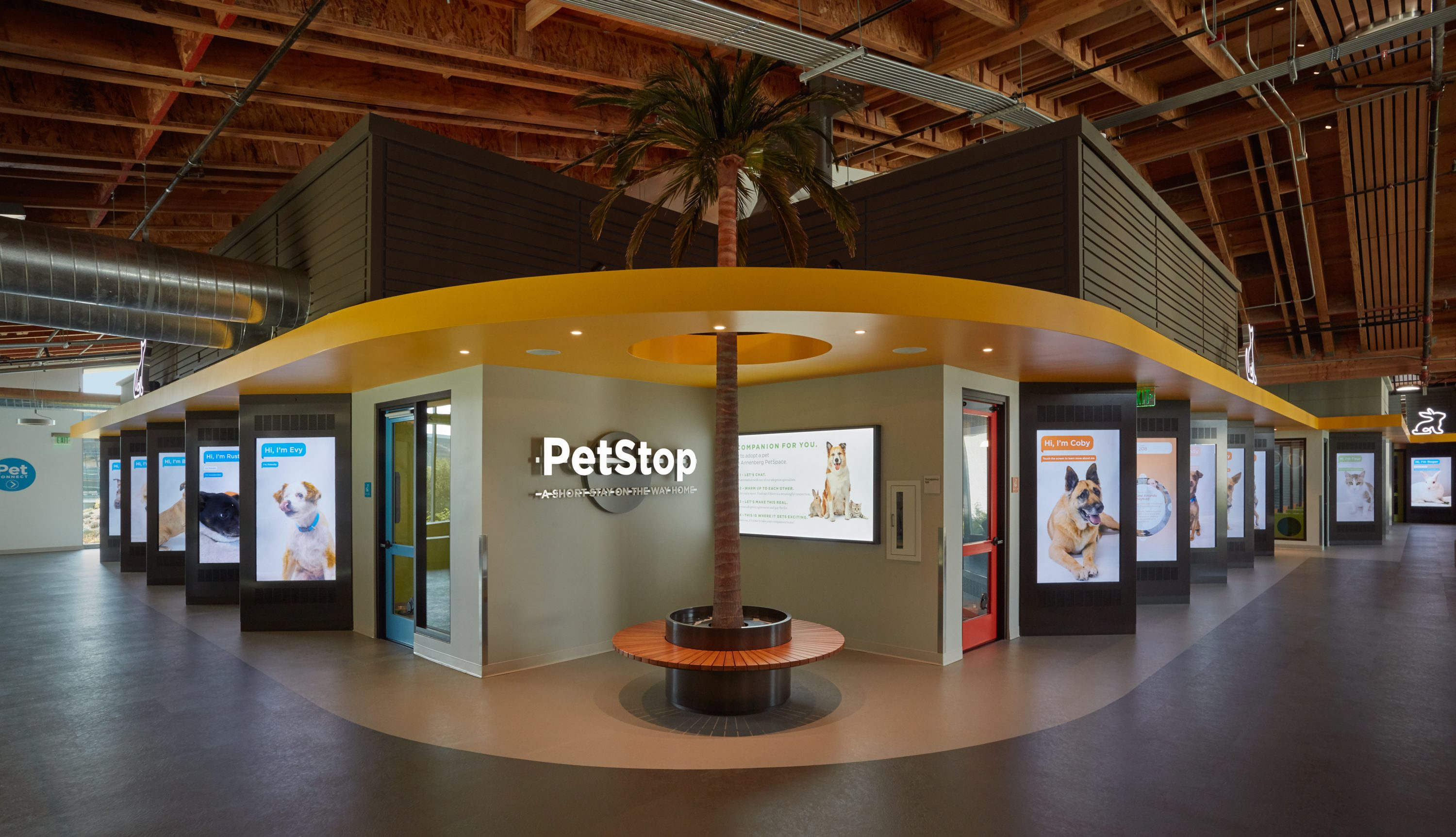 MATT construction Annenberg Playa Vista PetSpace Interior dog adoption rooms