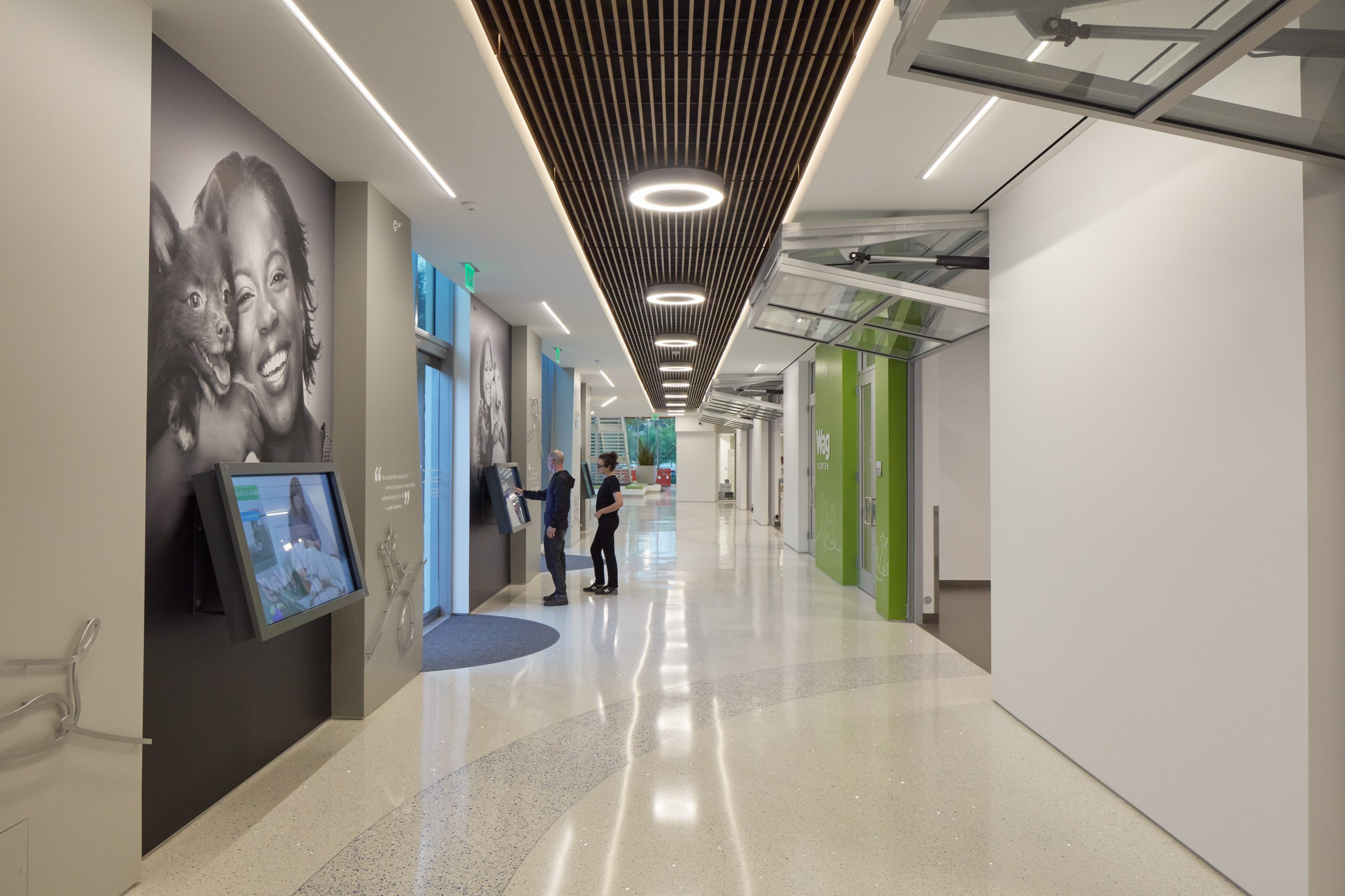 MATT construction Annenberg Playa Vista PetSpace Interior interactive wall