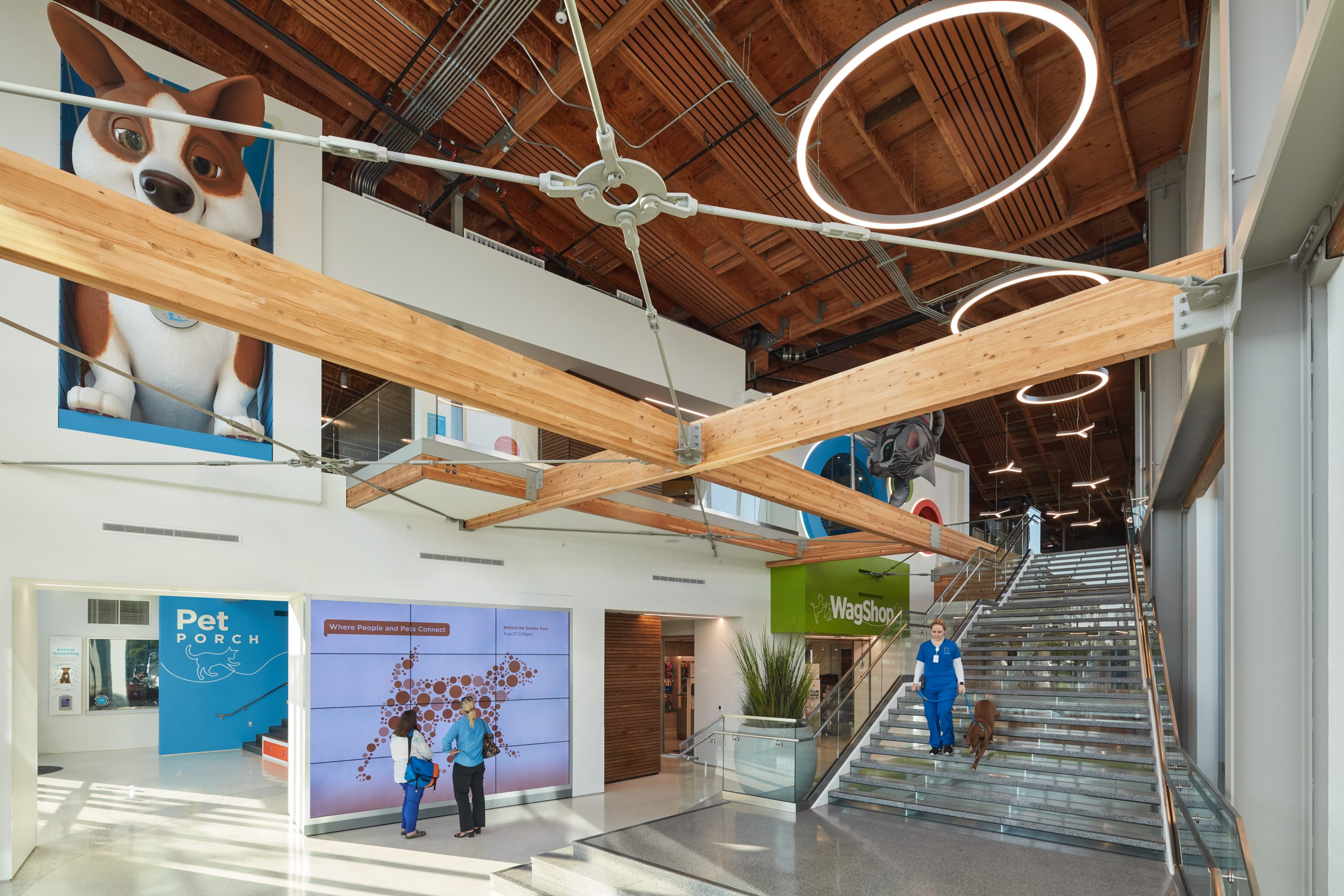 MATT construction Annenberg Playa Vista PetSpace Interior entrance lobby